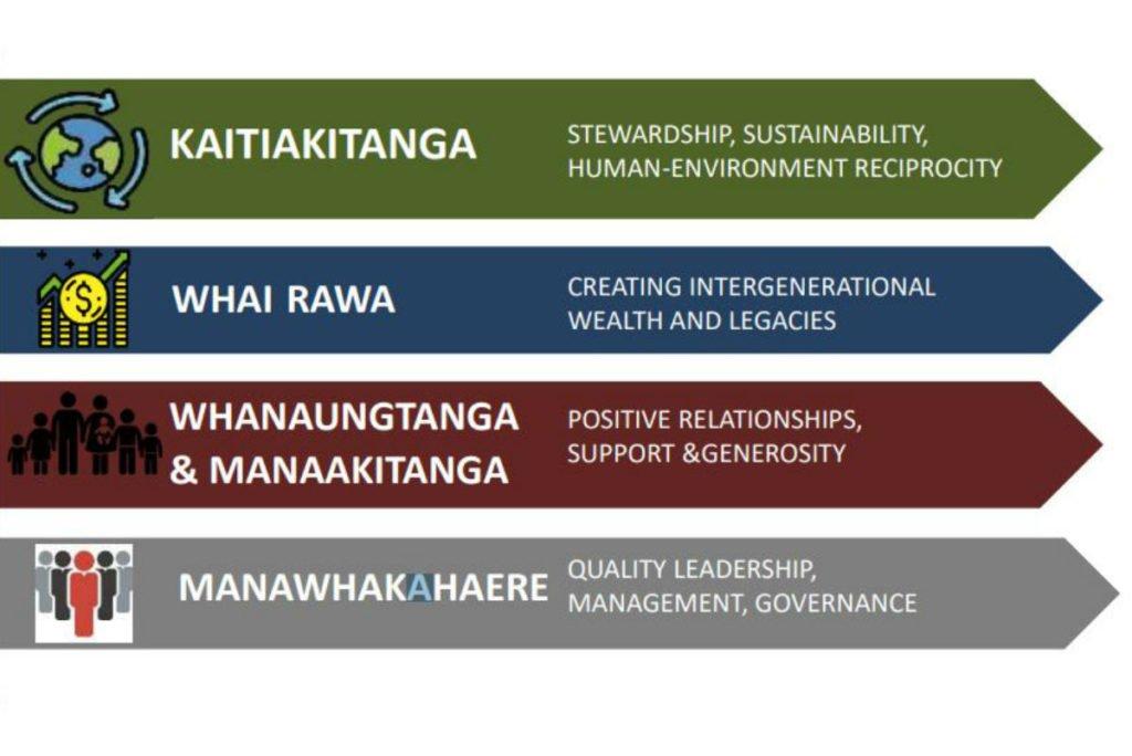 Maori agribusiness drivers