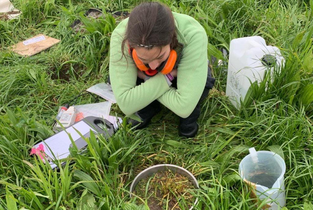 Dr Nina Koele measuring water infiltration rate (photo credit: Jason Nolan)