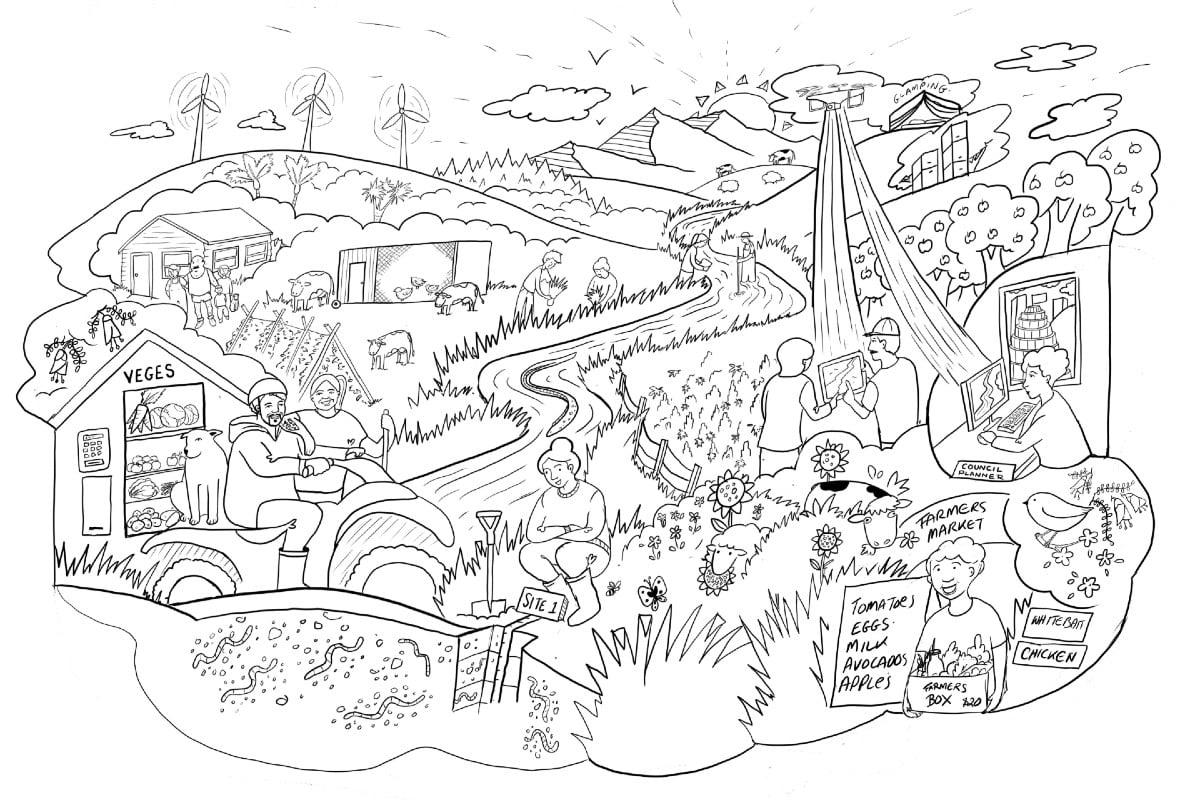 Land Use Opportunities: Whitwhiti Ora - vision sketch by Yasmine El Orfi