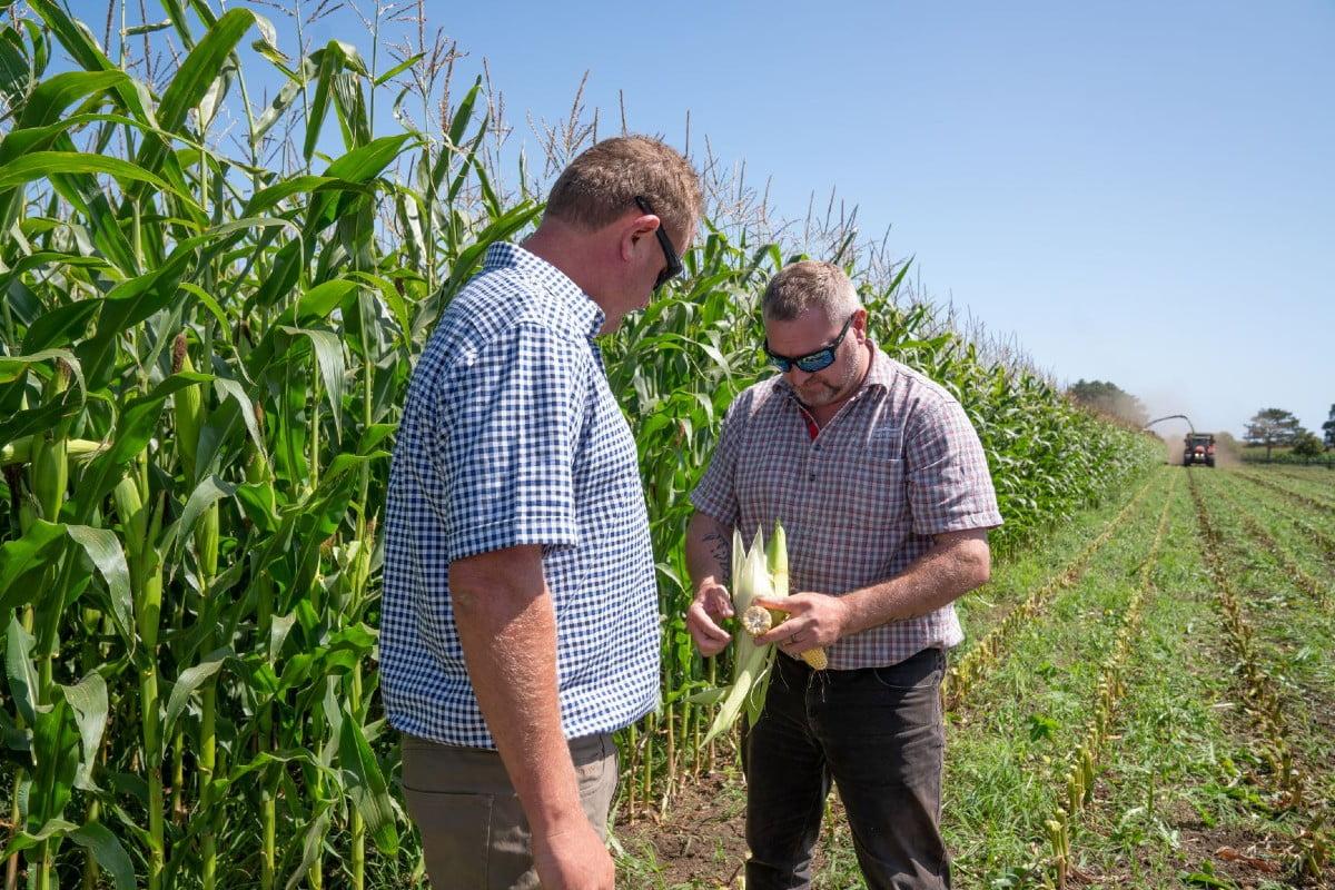 Farmlands advisor on farm